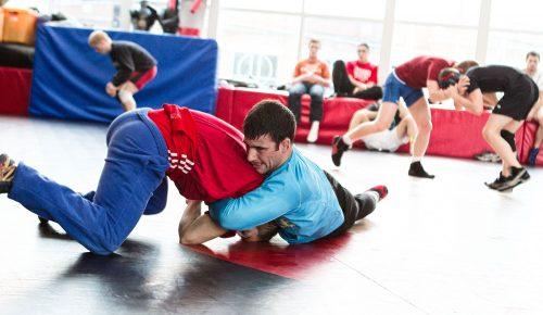 Adult MMA Programs